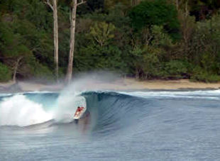 Surf Mentawai Islands: Macaronis Surf Resort
